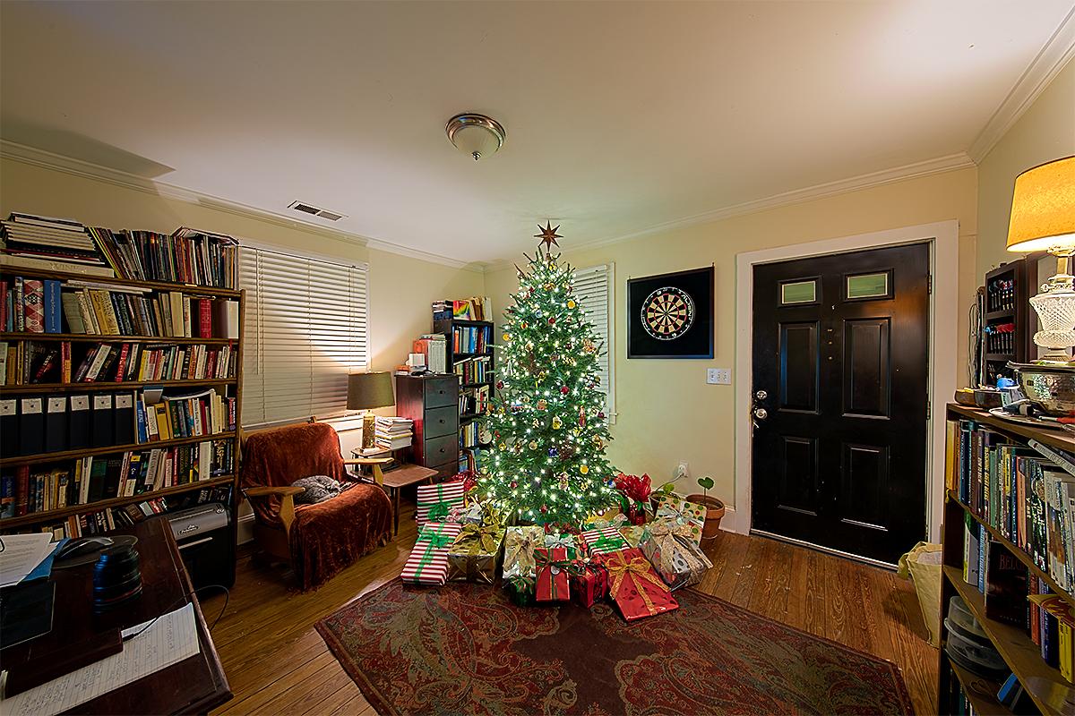 IMAGE: http://chuck-d.net/images/potn/ChristmasTrees/Christmas%20Tree%202016%20HDR%2011mm.jpg